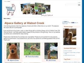 Alpaca Picture Gallery